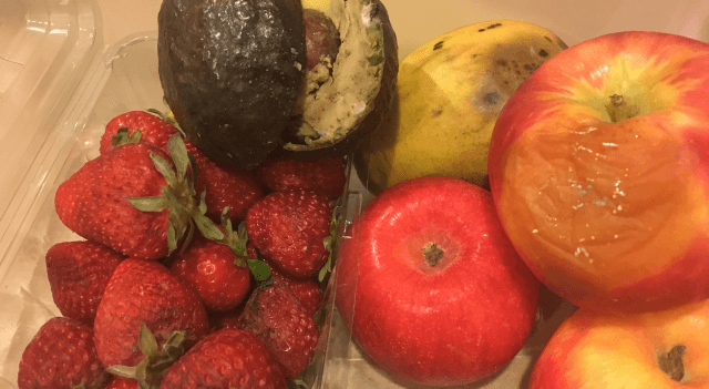 Wyandot Joins United Nations Day of Awareness of Food Loss and Waste